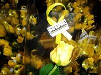 De N-VA bloemen
